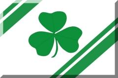 Irish Ancestry Group